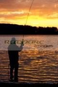Angling Fishing