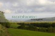 Glenarm-glen,-glenarm,-county-antrim,-nothern-ireland